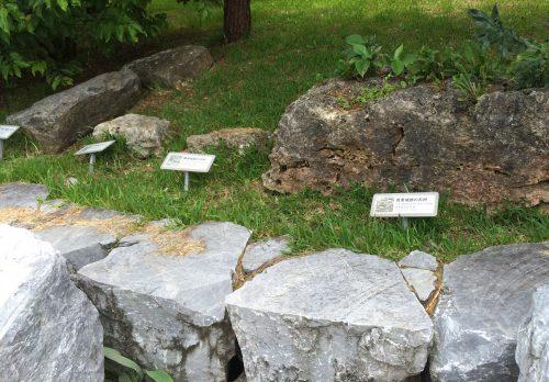 4つの城址の石の違い。