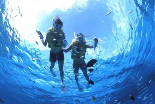 子供でも楽しめるシュノーケル。島内には、レンタルもあるので気軽に体験できます。