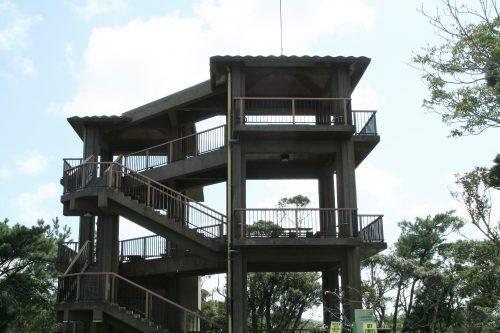 名護城公園は絶景ポイント、ハートの桜は隠れた名所