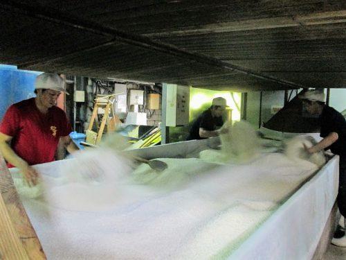 崎山酒造廠の三角棚、黒麹菌を丁寧に手作業でつけていきます。
