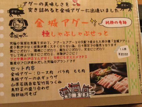 名護で飲むならココ!おすすめ飲食店5選金城アグー