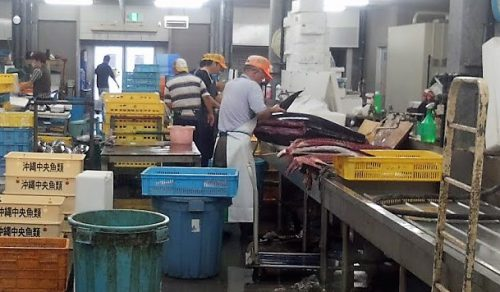 那覇魚市場でまぐろをさばく