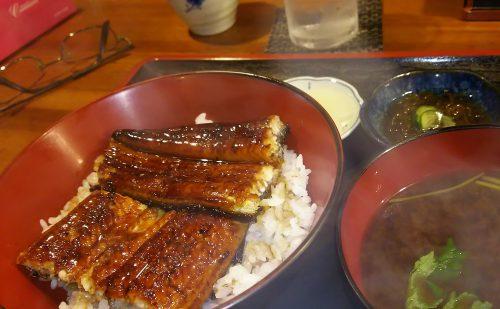 ぼんぼんのうなぎ丼は赤だしともずくがついて1030円