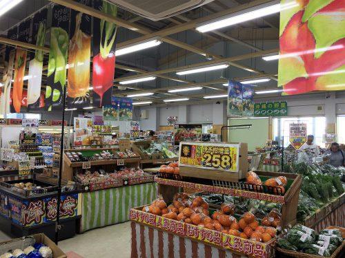 新鮮な野菜、果物、沖縄の地元でとれたものばかり