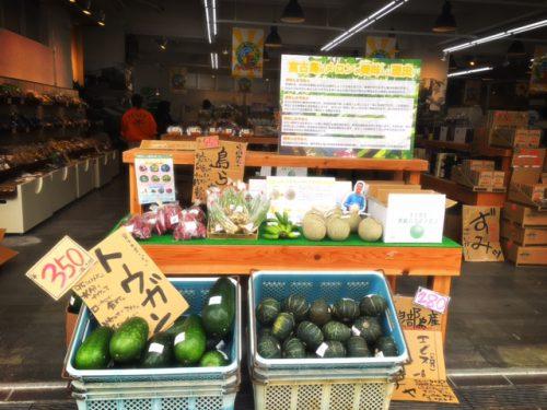 宮古島直送、新鮮で安い野菜!