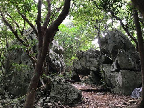 大石林山の巨岩コース
