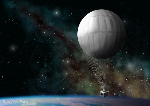 宮古島から魚を宇宙へ!「風船で宇宙旅行」初の生物撮影挑戦