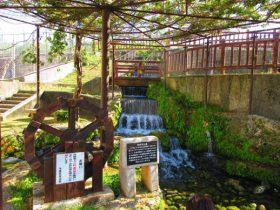 夏は湧水!冷え冷えの泉で涼もう!糸満市「与座ガー」