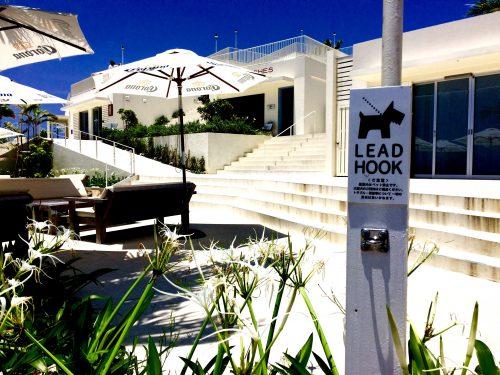新しくできたウミカジテラスも人気のエリアで、たくさんのお店があります。また沖縄では珍しい温泉施設もあります。