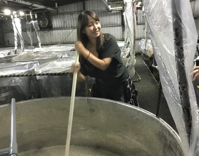 崎山酒造廠は三日麹のこだわりとさなえの攪拌作業