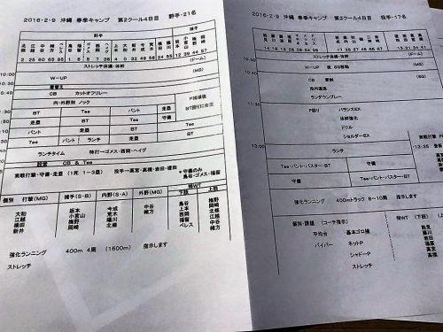 注目の阪神宜野座キャンプ見学のおすすめはスケジュールチェック