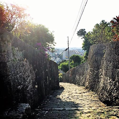ケコ散歩~首里金城町の石畳は上から下へ