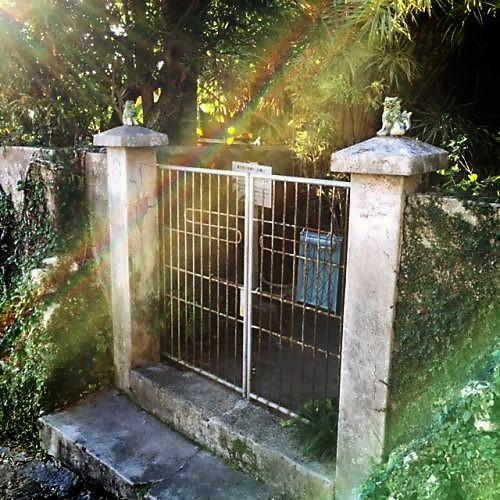 ケコ散歩~首里金城町の石畳は上から下へちゅらさんの生家