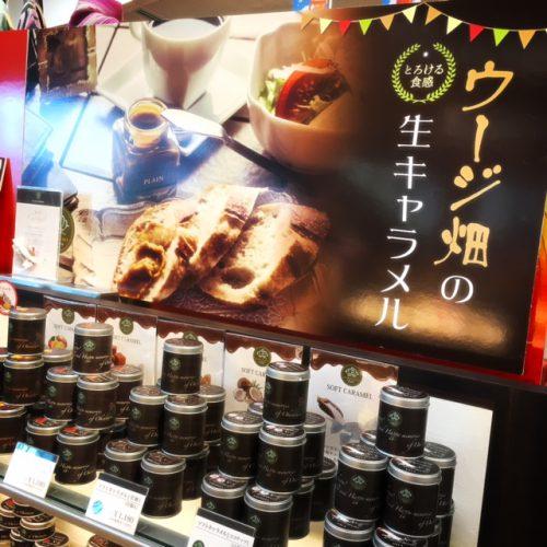 那覇空港で帰る人気のお土産、人気商品の一つの生キャラメルです。ちょっと贅沢な缶に入った生キャラメルは、沖縄土産にピッタリです。