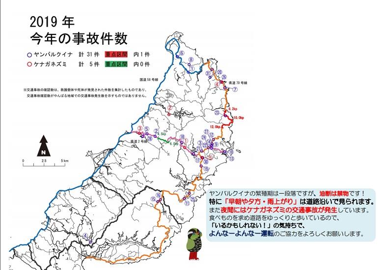 ヤンバルクイナの交通事故件数