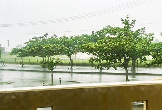 沖縄の台風の威力