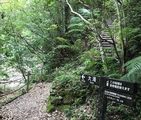山の中で携帯OK比地大滝
