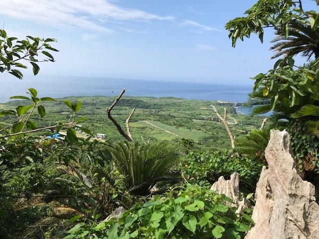 山登り気分で海が見える絶景