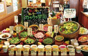 80種類以上の島野菜等が食べ放題「沖縄菜園ビュッフェ カラカラ」