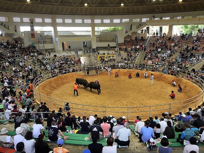 5000人収容の唯一のドーム型闘牛場「石川多目的ドーム」