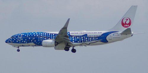 ジンベエジェットは日本トランスオーシャン航空(JTA)