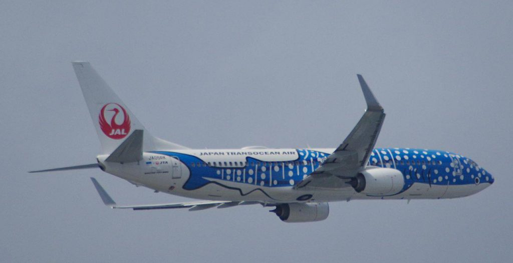 久米島直行便の初日はジンベエジェットも飛ぶかもしれません。