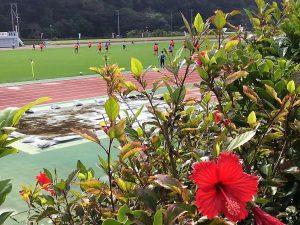 沖縄キャンプ2019年はサッカーにも注目!プロ野球だけじゃない!
