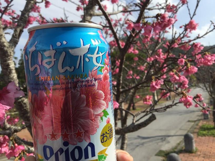いちばん桜オリオンビール