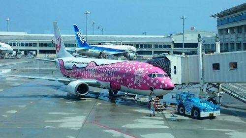 さくらジンベエジェットは日本トランスオーシャン航空(JTA)