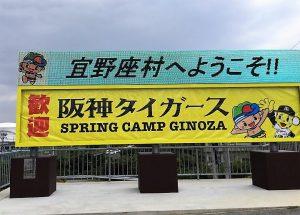 宜野座の阪神タイガースキャンプ2019!<グルメ編>