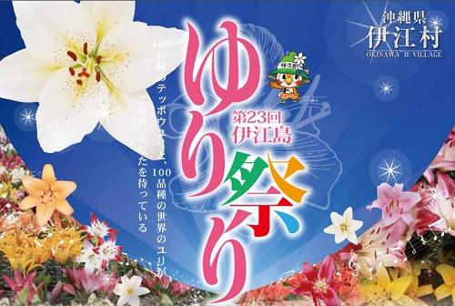 第23回「伊江島ゆり祭り」へ100万輪のユリを観に行こう!