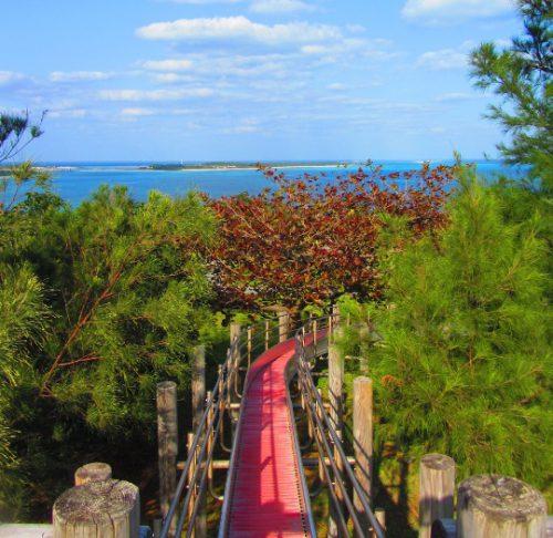 宮崎駿さんプロデュースの建設予定地だった久米島の銭田森林公園