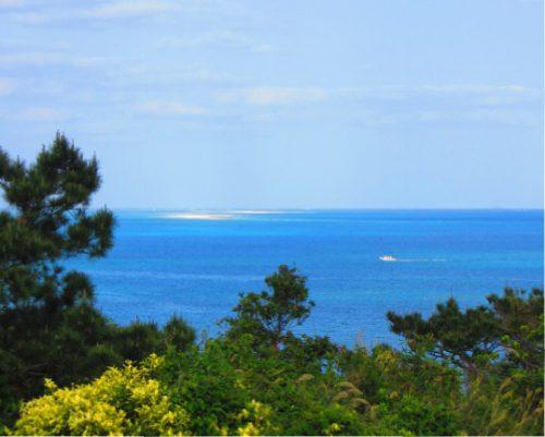 宮崎駿さんプロデュースの建設予定地だった銭田森林公園ハテの浜を望む