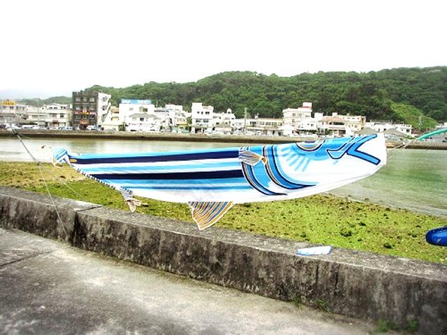 美ら海水族館のある本部町カツオのぼりが泳ぐ