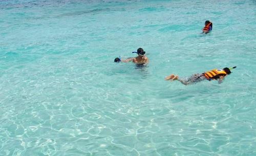 夏到来!沖縄県内のビーチすべての水質「良好」ハブクラゲ落雷