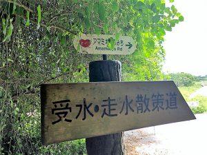 琉球の稲作発祥の地と伝えられる聖地「受水走水(ウキンジュハインジュ)」