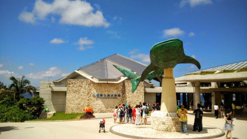 【夏休み限定】美ら海水族館がナイトアクアリウムに!