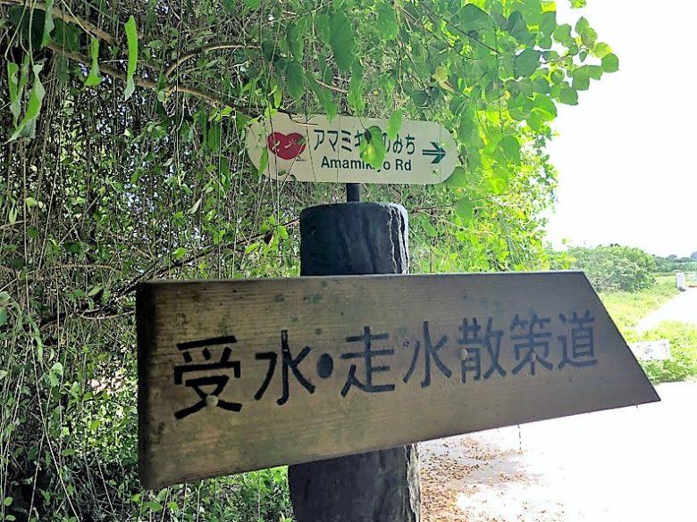東御廻りの受水走水への散策道