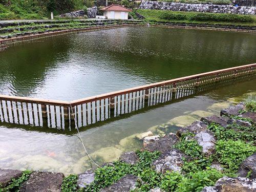 【旅のテレビ】『池の水全部抜く大作戦』沖縄編田空の駅ハーソー公園