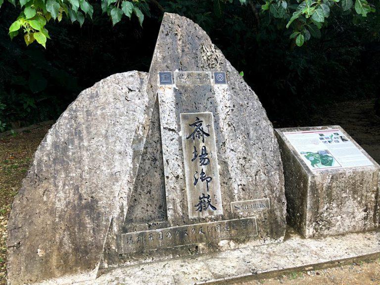 沖縄素材の夏休みの自由研究のススメ!