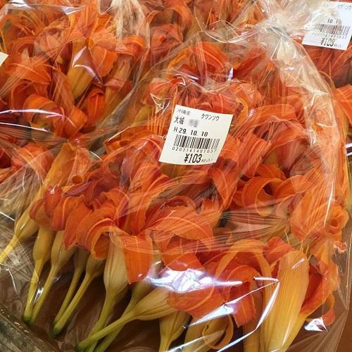 沖縄のオレンジ色の綺麗な花。クワンソウ