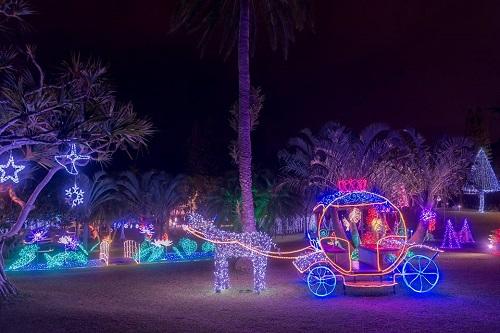 沖縄ではクリスマスから東南植物園のイルミネーションがすごい