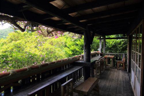 森カフェは沖縄の自然いっぱい、本島北部の本部町農芸茶屋四季の彩で癒されたい