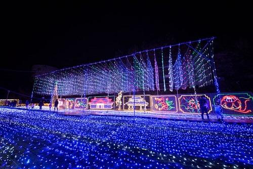 沖縄ではクリスマスから沖縄こどもの国のイルミネーションがすごい