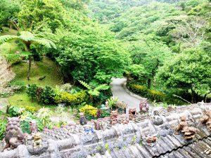 森カフェは沖縄の自然いっぱいに癒されたい!北部カフェ4選