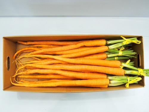 沖縄野菜を家庭菜園で育てて、沖縄料理を作ろう沖縄島ニンジン