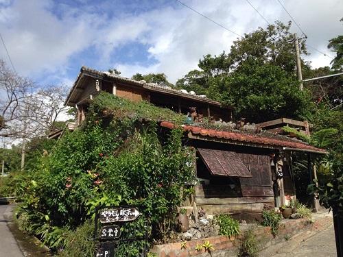 森カフェは沖縄の自然いっぱい、本島北部の本部町やちむん喫茶で癒されませんか