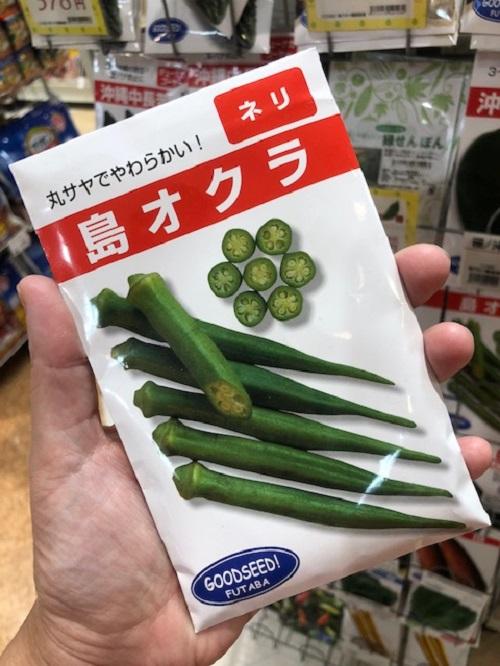 沖縄野菜を家庭菜園で育てて、島オクラで沖縄料理を作ろう