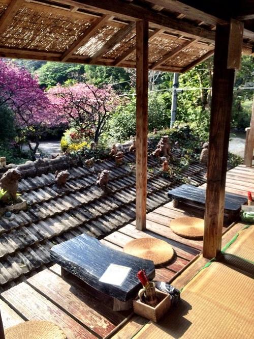 森カフェは沖縄の自然いっぱい、癒されたい本島北部本部町のカフェ4選