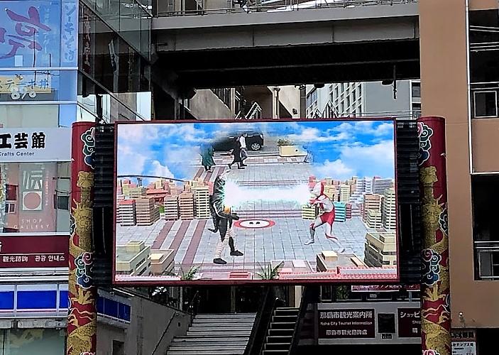 2019年沖縄の「桜・ひまわり・コスモス」開花状況!!